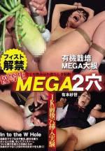 優等生MEGA2穴 フィスト解禁 有本紗世