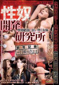 性奴開發研究所 ~快樂絶頂狂亂哭泣的女體~ 飼育記錄 Vol.1 姫川聖羽